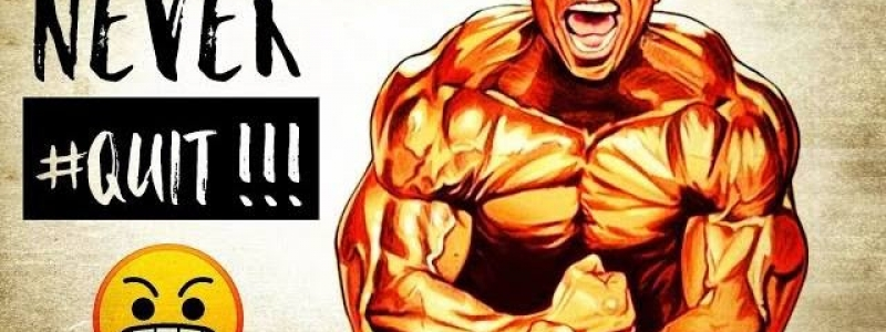 2017 new york pro ifbb: full results